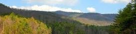foto landschap smal 3